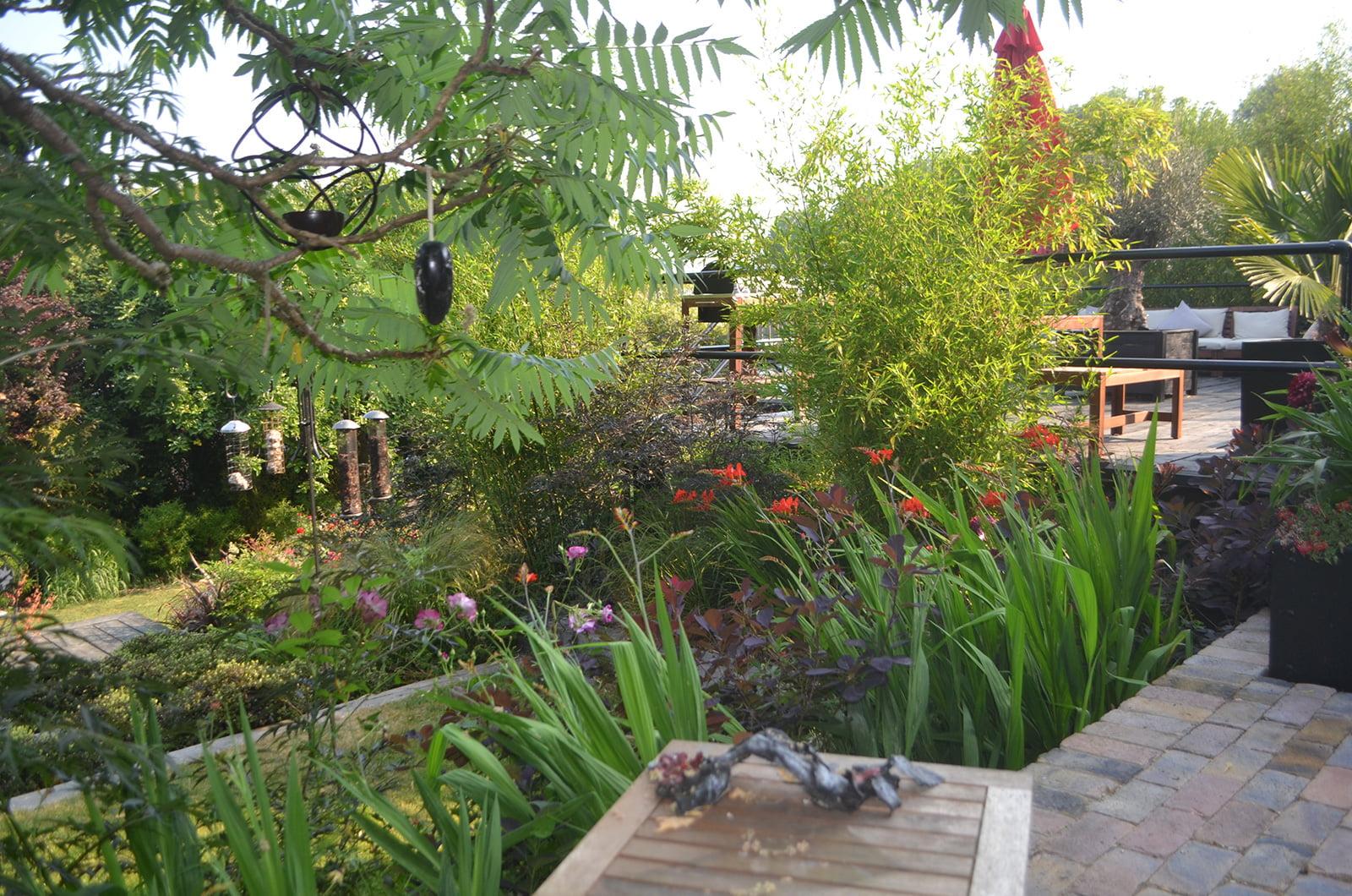 Contemporary Gardens & Architectural Gardens